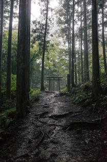 Kumano_Kodo_8.jpg